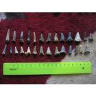 Зубы доисторических морских животных