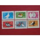 Венгрия 1957г. Птицы.