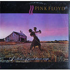 Pink Floyd, A Collection Of Great Dance Songs, LP 1981