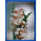 Фото, Цветы (1), Минсвязи РБ, 1995, чистая.