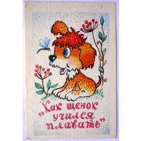 Календарик Как щенок учился плавать1988 год