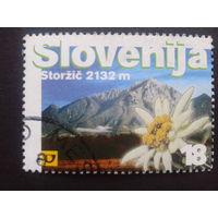 Словения 2000 горы, цветы