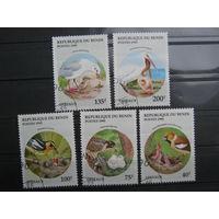 Марки - фауна, Бенин, птицы