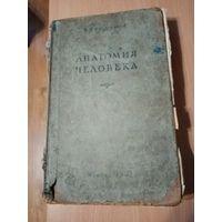 Анатомия человека.Медгиз. 1951 г.