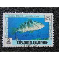 Британские Каймановы острова 1979 г.