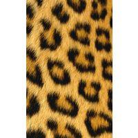 Чехол бампер на заднюю крышку для Айфон iPhone 4 4s и пленка. Шикарный леопард. Чехол с фотопринтом - идеальные настоящие пятнышки, видна каждая шерстинка. Сверху мягкое покрытие, на свету есть золото