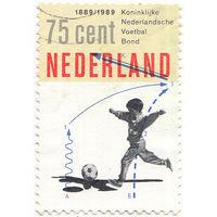 Нидерланды 1989 году 100-летия футбольного союза