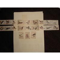 Спичечные этикетки:Птицы.Слободской-77