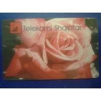 Албания Роза 200