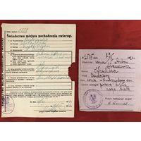 Паспорт лошади 1920-й год и Swiadectwo miejsca pochodzenia zwierzat 1931 год цена за все