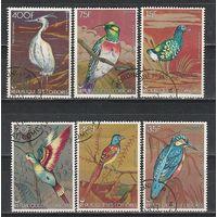 Серия из 6 марок Коморы 1978 Птицы MI 377-382