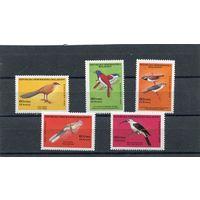 Мадагаскар. Птицы, вып.1986