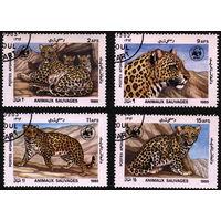 Кошки. Афганистан. 1985. Леопарды. Полная серия. Гаш.