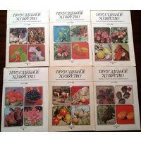 Приусадебное хозяйство-6шт за 1988г