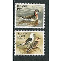 Исландия. Птицы. Вып.04