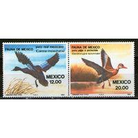Мексика. Птицы. Сцепка. Михель- 1893-1894. Чистые.