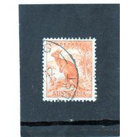 Австралия.Ми-137. Красный кенгуру (Macropus rufus).1938.