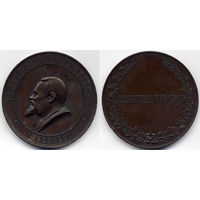 Медаль 1891 в честь адвоката В. Спасовича. Бронза. Очень редкая, R3!