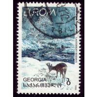 1 марка 1999 год Грузия Олень 313