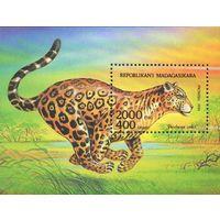 Ягуар Мадагаскар 1994 год 1 блок