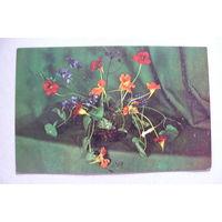 Вахромеева М., Композиция из цветов; 1974, чистая.