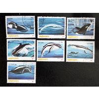 Вьетнам 1985 г. Морские млекопитающие. Киты. Фауна, полная серия из 7 марок #0221-Ф1P50
