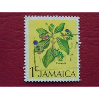 Ямайка. Флора.