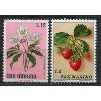 Флора. Цветы, ягоды. Сан-Марино. 1971. Чистые