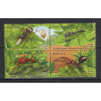 Бразилия Муравьи 2013 год чистая полная серия из 4-х марок в квартблоке