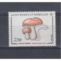 [1068] Сент- Пьер и Микелон 1988.Грибы.