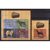 2014 Гамбия Фауна Млекопитающие Собаки
