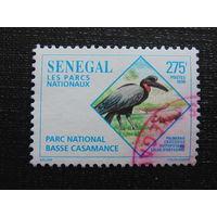 Сенегал 1996 г. Фауна.