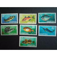Албания. 1967г. Рыбы. Две марки гашеные.