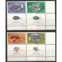 Израиль. Рыбы Красного моря. 1963г. Mi#291-44. Серия с купонами.
