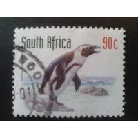 ЮАР 1998 пингвин