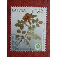 Латвия 2017г. Флора.