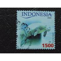 Индонезия 2005г. Фауна.
