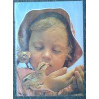 Рябко А. Птенцы. Дети.1987 г. Чистая
