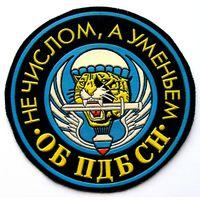 Шеврон 1730-го отдельного батальона противодиверсионной борьбы специального назначения РВСН России (распродажа коллекции)