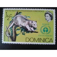 Доминика колония Англии 1972 фауна
