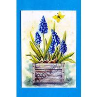 Петунова Анна. Ящик с весной. Украина (открытка прошлых лет)