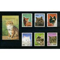 Конго 1996г. кошки, 6м. 1 блок