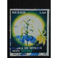 Мексика 1982г. Флора.