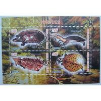 Марки Чад 2011 г. Черепахи, лягушки, крокодилы. Цена за блок (g)