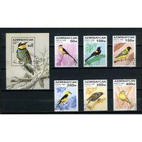 Азербайджан, 1996г. певчие птицы. 6м. 1 блок