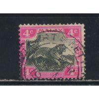 GB Колонии Малайские федерированные государства 1904 Тигр Стандарт #29в
