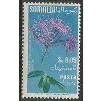 Сомали(итальянское). Растение аммохарис. 1955г. Mi#299.