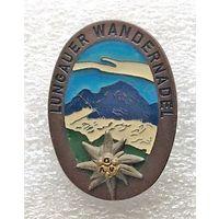 Туристический знак с эдельвейсом.Горная вершина Lungauer Kalkspitze 2471 м над уровнем моря. Австрия. 3/4 см