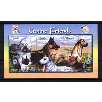 2001 Уганда. Собаки