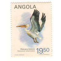 Ангола. Птица. 1 марка. Чистая.